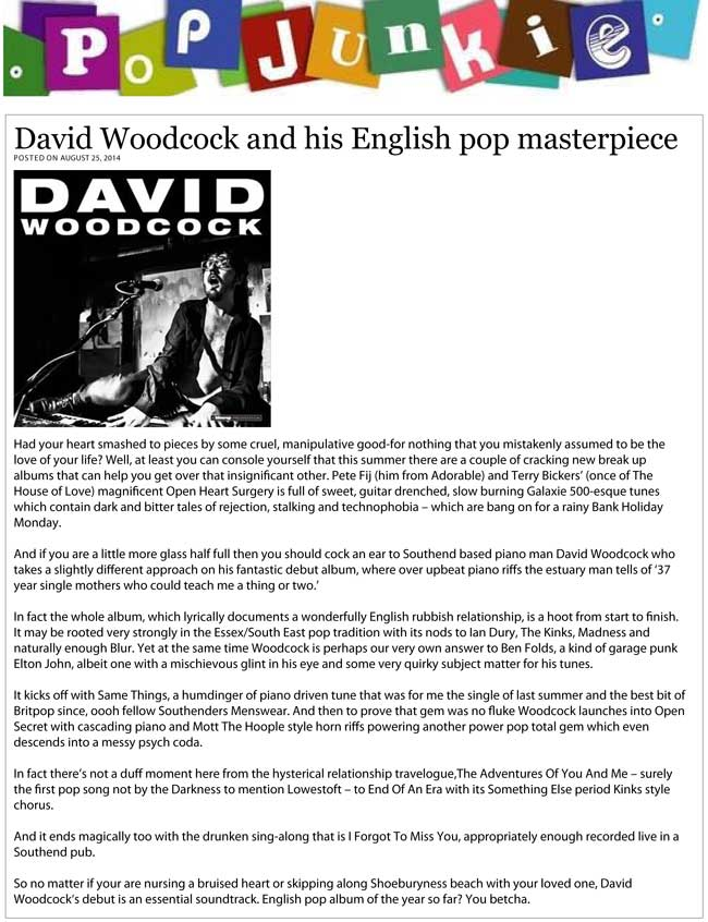 PopJunkie: David Woodcock and his English pop masterpiece - Debut Album Review